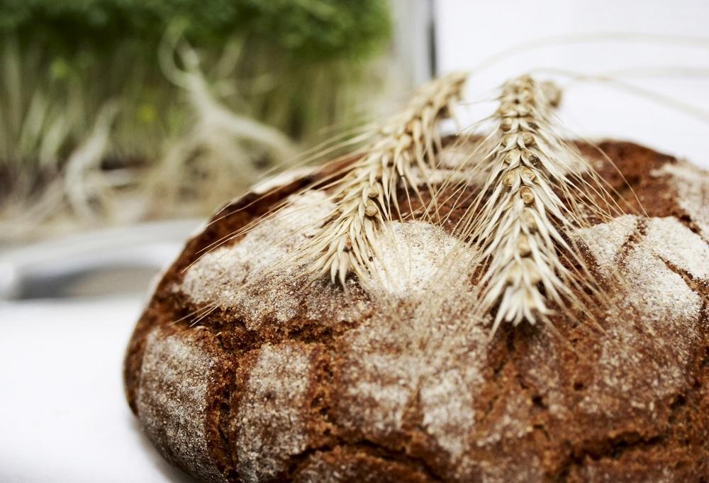 pane cereali antichi